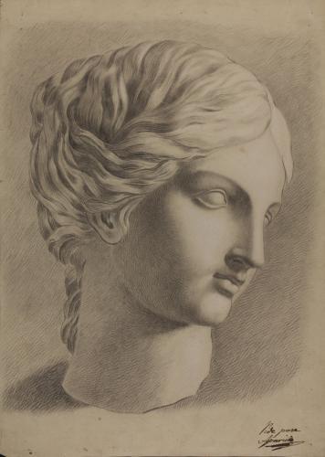 Estudio de la cabeza de la Venus Giustiniani?