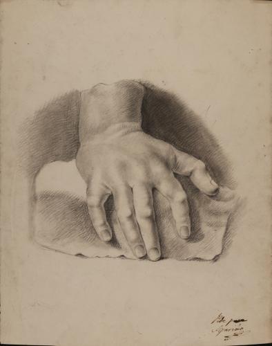 Estudio de mano apoyada sobre una piedra