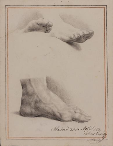 Estudio de un pie izquierdo y otro derecho apoyados y pie izquierdo de perfil