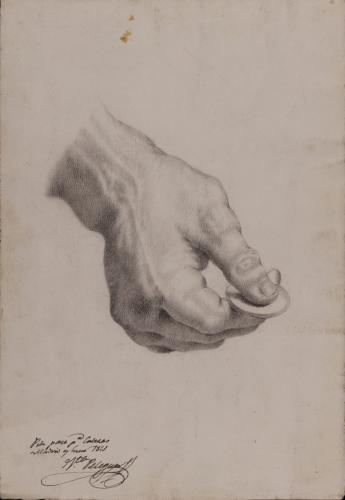 Estudio de mano izquierda con moneda