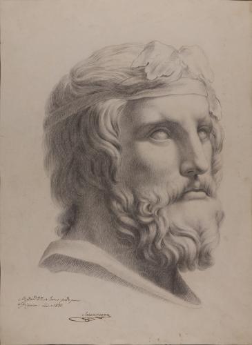 Estudio del busto del Dionisos Farnese