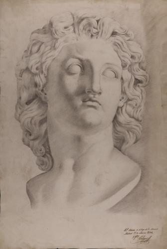 Estudio de la cabeza de Alejandro Magno