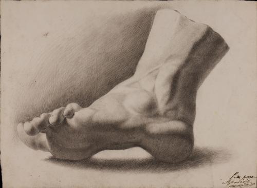 Estudio de pie derecho de perfil ligeramente inclinado
