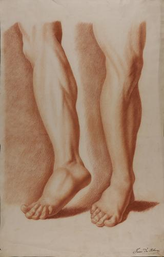 Estudio de pierna izquierda y pierna derecha