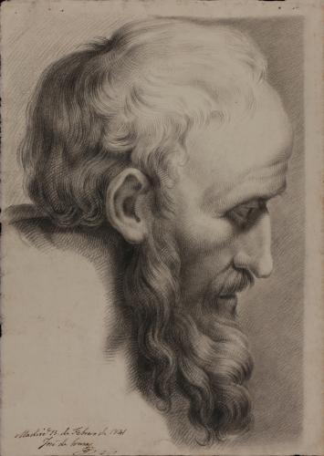 Estudio de cabeza de anciano barbado de perfil hacia la derecha