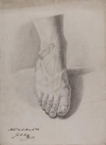 Estudio cenital frontal de pie derecho
