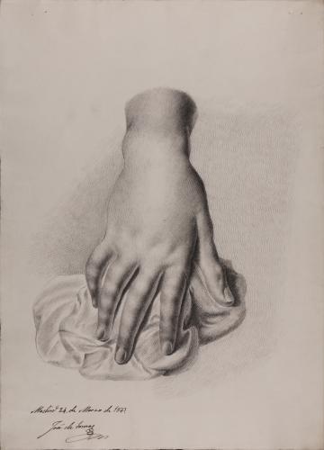 Estudio cenital dorsal de mano derecha sobre paño