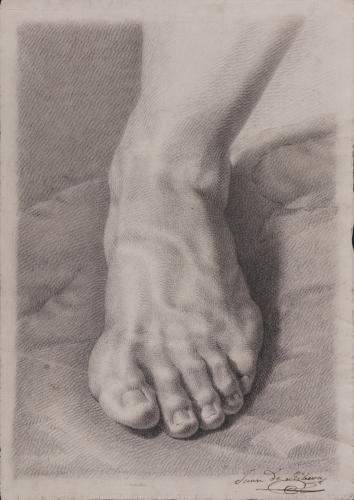 Estudio cenital frontal de pie izquierdo