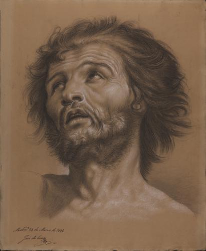 Estudio de cabeza masculina barbada mirando hacia arriba hacia la izquierda