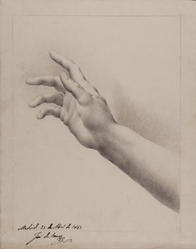 Estudio de mano y antebrazo derecho