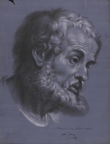 Estudio de la cabeza de San Pedro