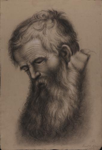 Estudio de cabeza de anciano barbado inclinada hacia la izquierda