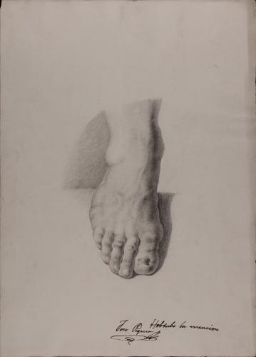 Estudio de pie derecho cenital frontal