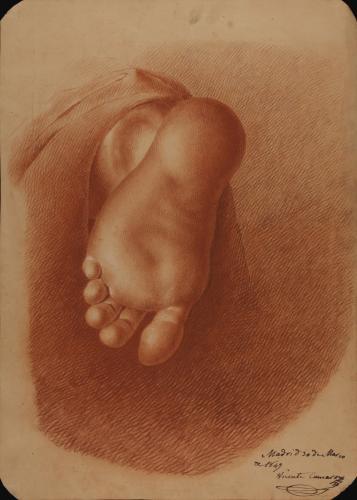 Estudio de planta de pie izquierdo