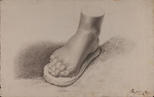 Estudio de pie derecho
