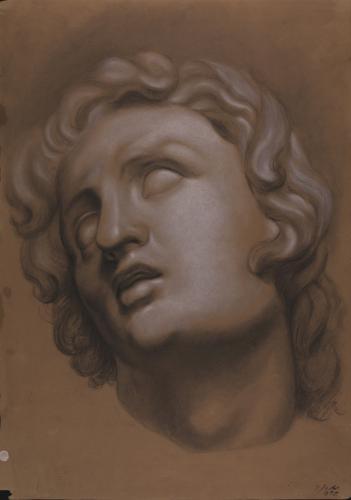 Estudio de la cabeza de Alejandro Magno moribundo