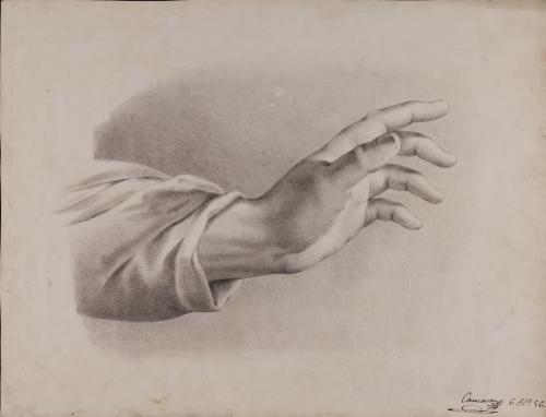 Estudio de mano izquierda con ropaje