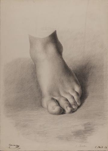 Estudio frontal de pie izquierdo