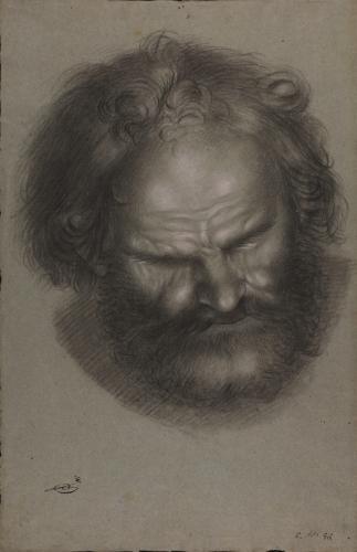 Estudio frontal de cabeza masculina barbada mirando hacia el suelo