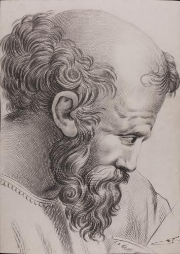 Estudio de la cabeza de Pitágoras de la Escuela de Atenas de Rafael