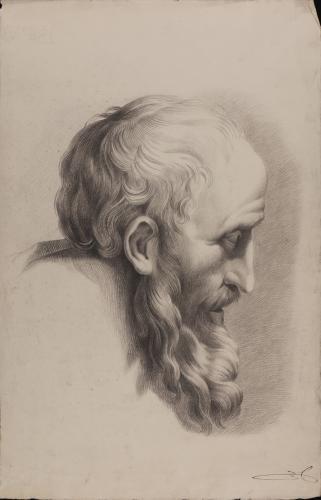 Estudio de cabeza de anciano barbada de perfil hacia la derecha