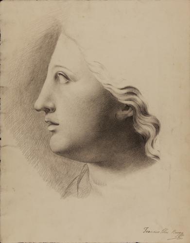 Estudio de cabeza de escultura femenina de perfil hacia la izquierda