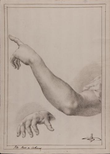 Estudio de brazo izquierdo y dedos de la mano derecha