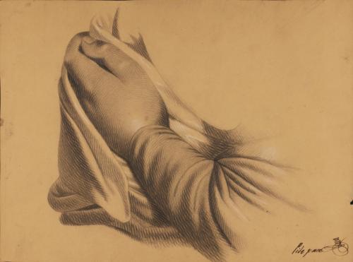 Estudio de mano izquierda sujetando ropaje
