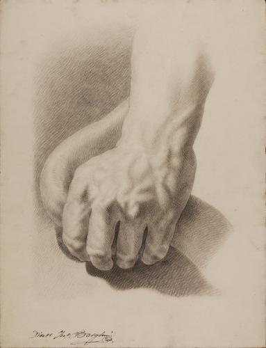 Estudio de la mano izquierda del Laocoonte