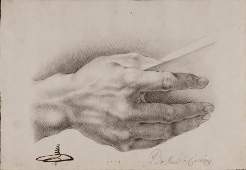 Estudio de mano derecha masculina sosteniendo un libro