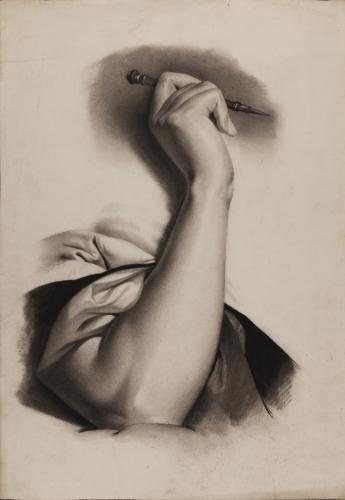Estudio de brazo derecho femenino con plumilla