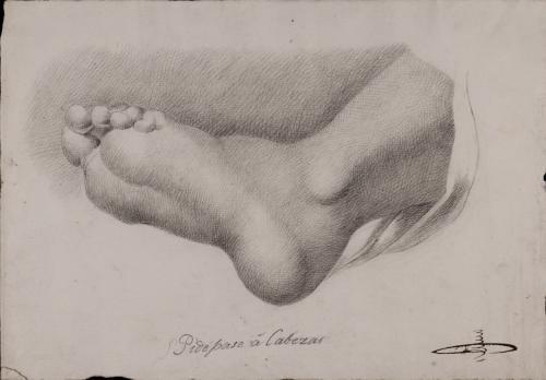 Estudio de la planta de pie izquierdo