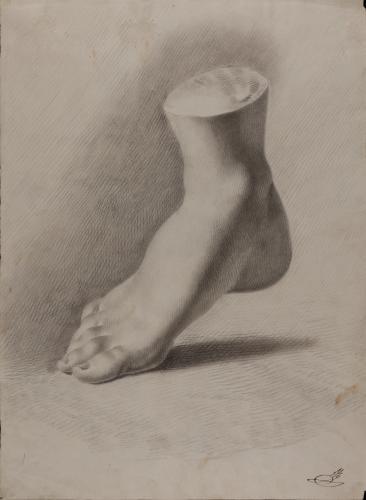 Estudio de modelo en yeso de pie derecho