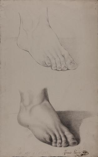 Estudio de pie derecho delineado y sombreado