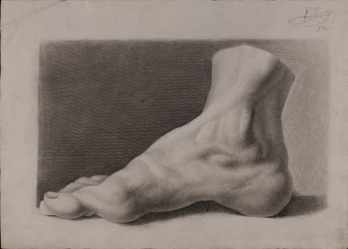 Estudio de pie derecho de perfil