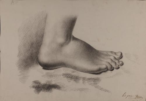 Estudio de pie derecho de perfil hacia la derecha