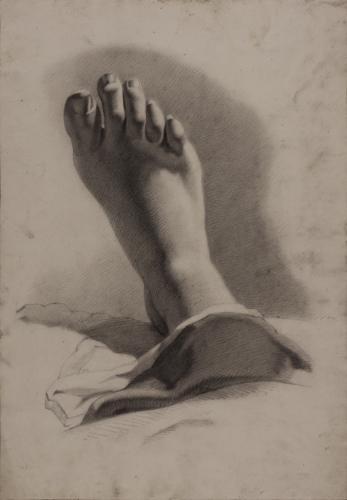Estudio de pie derecho en posición vertical