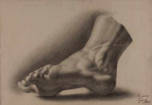 Estudio de pie izquierdo de perfil ligeramente ladeado