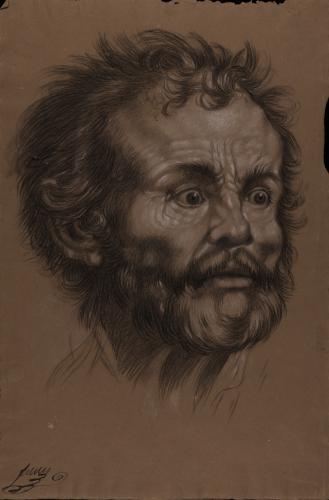 Estudio de cabeza masculina barbada de tres cuartos hacia la derecha