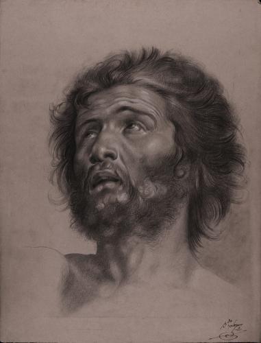 Estudio de cabeza masculina barbada hacia la izquierda mirando hacia arriba