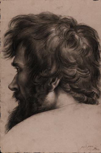 Estudio de cabeza masculina de perfil hacia la izquierda