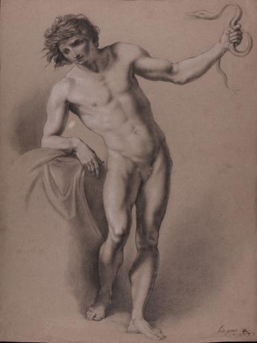 Estudio de un modelo masculino desnudo de pie con una serpiente en la mano izquierda