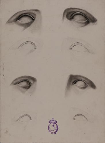 Estudio de ojos de frente perfilados y sombreados