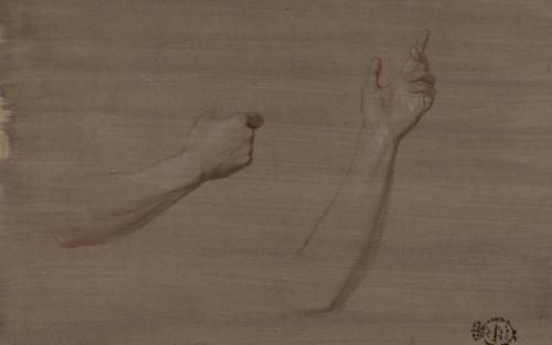 Estudio de brazo izquierdo y brazo derecho