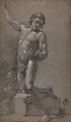 Estudio de modelo masculino desnudo semiarrodillado sobre un pedestal  y el brazo derecho levantado