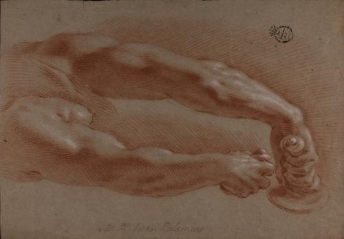 Estudio de brazo derecho e izquierdo extendidos