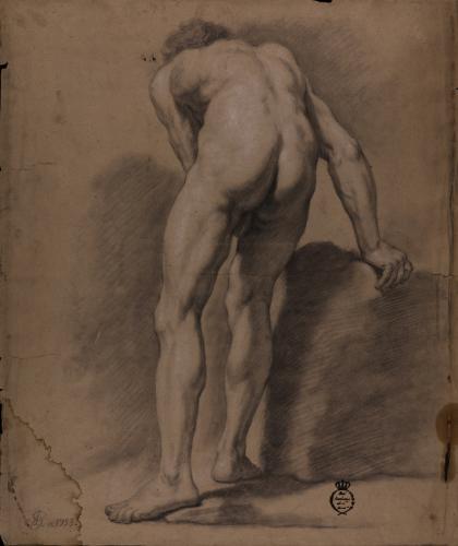 Estudio de modelo masculino desnudo de espaldas inclinado hacia delante