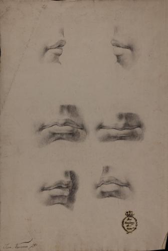 Estudios de boca de perfil, de frente y tres cuartos
