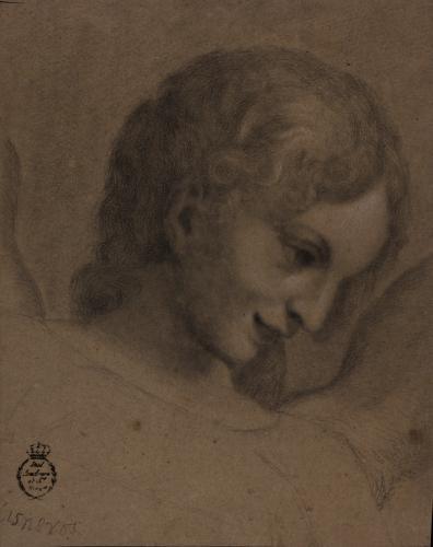 Estudio de cabeza de ángel de Correggio