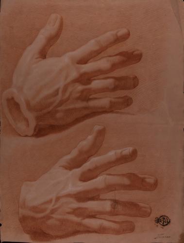 Estudio de modelo en yeso de mano derecha desde dos perspectivas